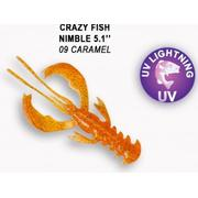 Crazy Fish  Nimble 5' #09 Caramel